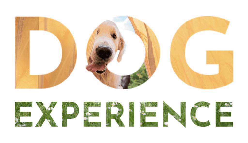 Dog Experience al Club del Sole